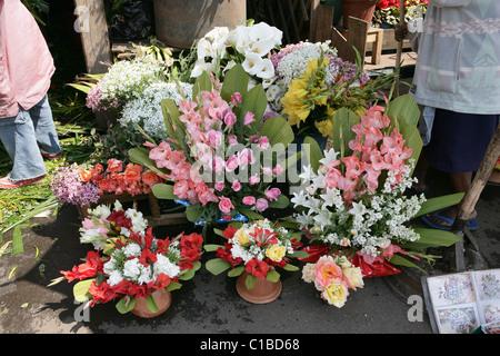 Vivacemente colorato visualizza di fiori per la vendita nel mercato dei fiori di Antananarivo, capitale del Madagascar Foto Stock