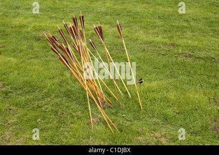 Gruppo di longbow frecce a. Foto Stock