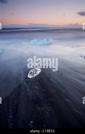 Iceberg sulla spiaggia nera con il lavaggio della marea intorno a loro in Islanda