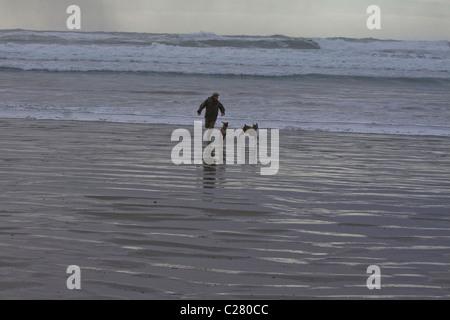 Uomo e due cani giocare nel surf, Pacific Rim National Park, l'isola di Vancouver, British Columbia Foto Stock