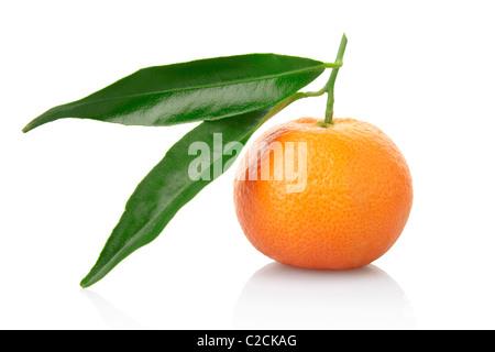 Il mandarino con foglie isolato su bianco Foto Stock