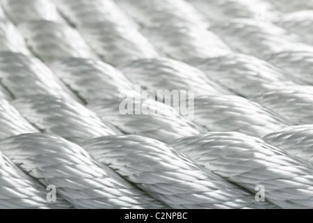 Macro studio di una nuova corda Foto Stock