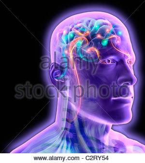 Uomo trasparente del cervello incandescente e frizzante Foto Stock