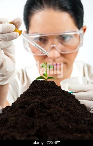 Agricola scienziata testing in laboratorio ,ella usando una pipetta con il liquido su una pianta nel suolo Foto Stock