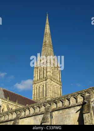La Cattedrale di Salisbury, Salisbury, Wiltshire, Inghilterra Foto Stock