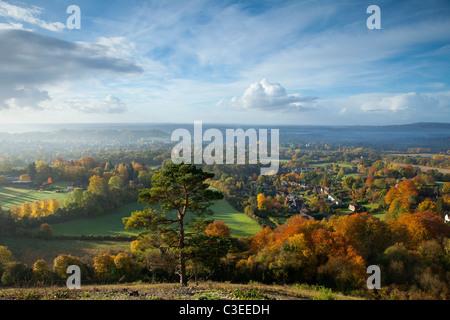 Autunno vista sud da Reigate Colley Hill North Downs Surrey in Inghilterra Foto Stock