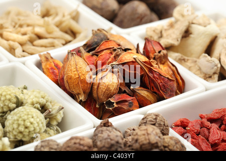 Primo piano della medicina tradizionale cinese