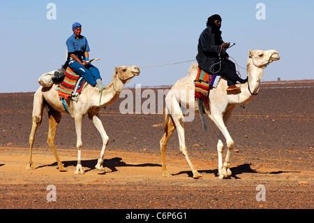 Nomadi Tuareg e di guida di un turista esaurito sul loro droemdaries durante un deserto rode nel deserto del Sahara, Foto Stock