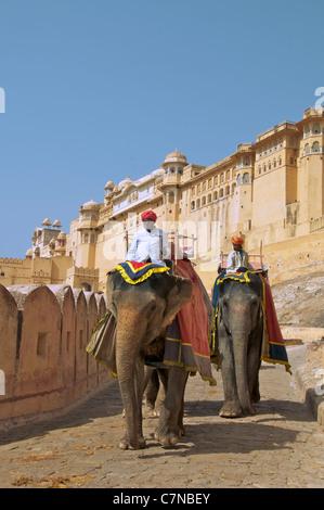 Gli elefanti e mahouts Ambra Palace Rajasthan in India Foto Stock