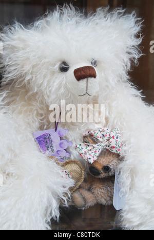 Fluffy orso bianco Foto Stock