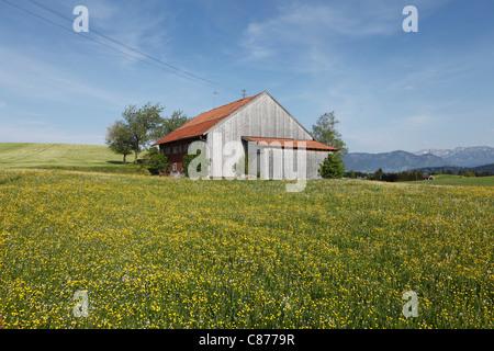 In Germania, il Land della Baviera e della Svevia, Allgaeu, Ostallgaeu, Roßhaupten, Egelmoosen, Vista della casa Foto Stock