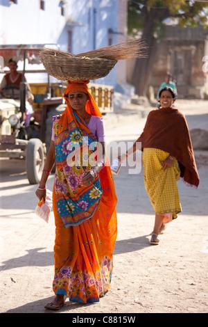 Giovane donna Indiana che trasportano il raccolto di grano in Narlai village nel Rajasthan, India settentrionale