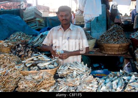 Pesce secco per la vendita, sul mercato Chalai, Trivandrum, Kerala, India Foto Stock