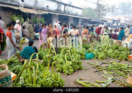 Le banane da cuocere per la vendita al mercato ortofrutticolo, Chalai, Trivandrum, Kerala, India Foto Stock