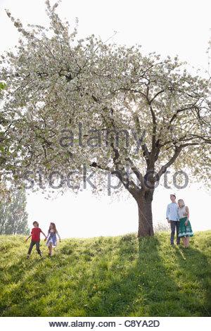 Famiglia giocare sotto agli alberi in posizione di parcheggio Foto Stock