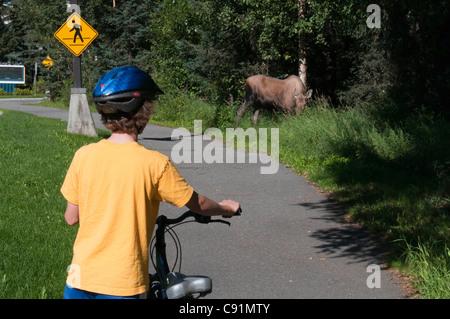 Un ragazzo si ferma per un'esplorazione alci sui percorsi per mountain bike sul University of Alaska Anchorage campus, Foto Stock