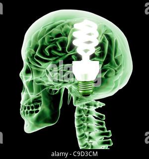 Cervello con luce verde della lampadina, in modo digitale immagine generata da Hank Grebe Foto Stock