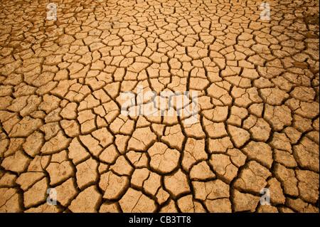Suolo incrinato in Sarigua National Park (deserto) nella provincia di Herrera, Repubblica di Panama. Foto Stock