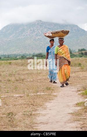 Le donne indiane passeggiate in campagna che trasportano merci in cesti sulle loro teste, andando a lavorare. Andhra Pradesh, India Foto Stock
