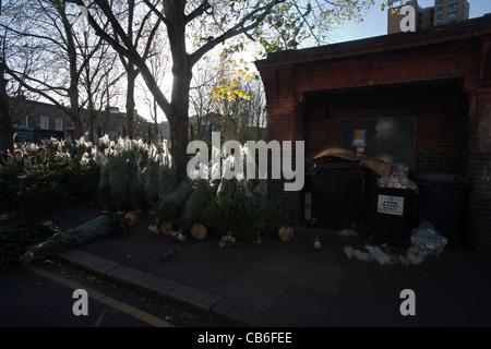 Alberi di Natale in vendita in Columbia road flower market Londra Foto Stock