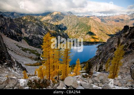 WASHINGTON - i larici in autunno colori sopra il lago Colchuck in Alpine Lakes Wilderness Area del Wenatchee National Foto Stock