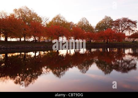 Riflessioni, fogliame di autunno sulla spianata di Boston, Massachusetts Foto Stock