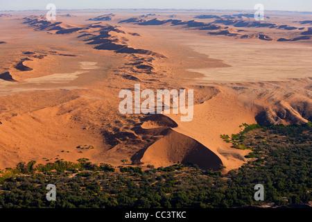 Desert incontra il verde di terra fertile, Namib Desert, Namibia vista aerea Foto Stock