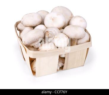 Cesto pieno di funghi bianco isolato su uno sfondo bianco Foto Stock