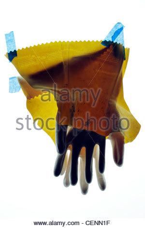 Rotte domestiche guanti di lavoro con il nastro blu Foto Stock