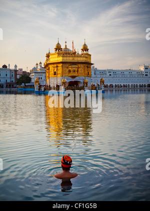 Un Sikh testa di uomo con turbante prende un bagno in piscina che circonda il tempio d'oro di Amritsar Punjab, India Foto Stock