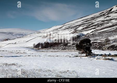 A croft in paesaggi innevati di Glen Gairn. Foto Stock