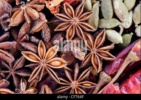 Cucina indiana spezie pattern. Piatto fotografia laici dal di sopra. Foto Stock