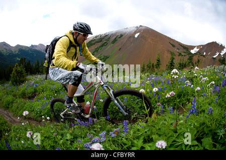 Chilco mountain bike leccare Creek, British Columbia, Canada Foto Stock