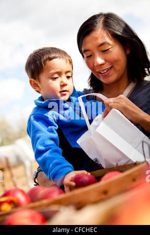 Una madre e il suo 2.5 anno vecchio figlio selezionare le mele da una benna.