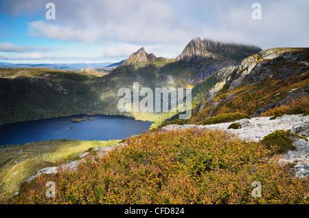 Cradle Mountain e il Lago di colomba, con latifoglie (faggio Fagus), Cradle Mountain-Lake St Clair National Park, Foto Stock