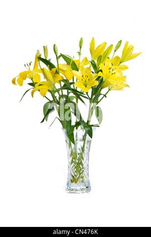 Vaso di cristallo pieno di gigli gialli Foto Stock