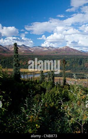 Autunno vista panoramica dell'Alaska Range e foreste di abete rosso con il fiume Nenana presi dall'estremità occidentale Foto Stock