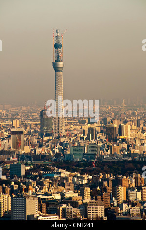 La Tokyo Sky Tree, o la nuova Torre di Tokyo, nel dicembre 2010, visto da Ikebukuro Sunshine City obversation deck Foto Stock