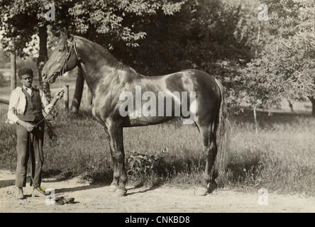 Giovane uomo afro-americano visualizzando il suo cavallo su una strada di campagna Foto Stock
