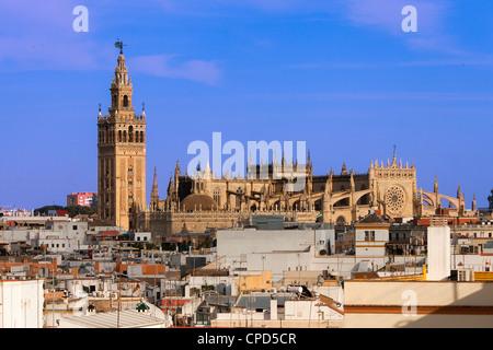 L'Europa, Spagna, Andalusia, Sevilla, La Giralda, la Cattedrale di Siviglia Foto Stock