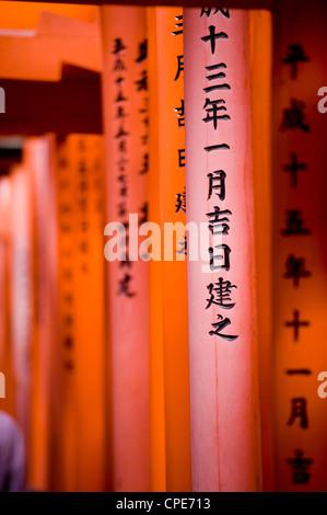 Vermiglio Torii Gates, Fushimi-Inari Taisha, Kyoto, Giappone, Asia Foto Stock