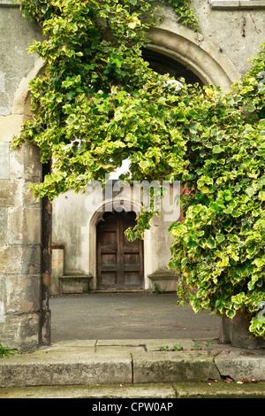 English Ivy, comune edera (Hedera helix) aumentano di oltre il sagrato Arch, London, Regno Unito Foto Stock