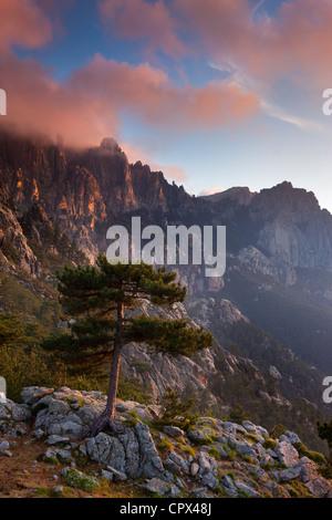 Il Col de Bavella all'alba, Corsica, Francia Foto Stock