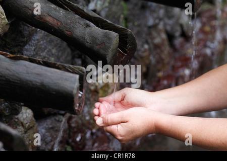 Lavaggio delle mani all'Chorros de Epina molle in Vallehermoso, La Gomera, isole Canarie, Spagna, Europa Foto Stock