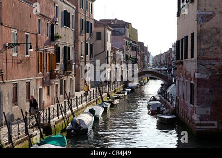 Via Giuseppe Garibaldi, quartiere di Castello, Venezia, Sito Patrimonio Mondiale dell'UNESCO, Veneto, Italia, Europa Foto Stock