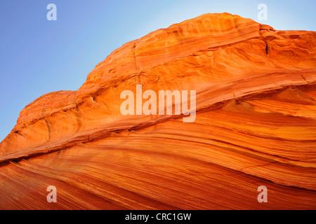Dettaglio del tipico bande Liesegang, Liesegangen anelli o anelli di Liesegang, Wave, nastrati eroso Navajo di roccia Foto Stock