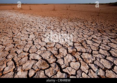 Suolo incrinato in Sarigua national park (deserto), nella provincia di Herrera, Repubblica di Panama. Foto Stock