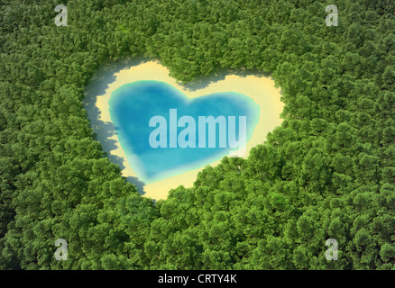 A forma di cuore stagno in una foresta tropicale Foto Stock