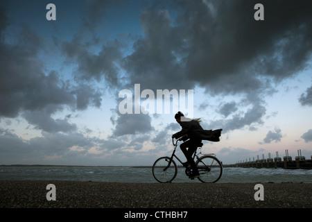 I Paesi Bassi, Kamperland, Donna ciclismo contro il vento tempestoso. Foto Stock