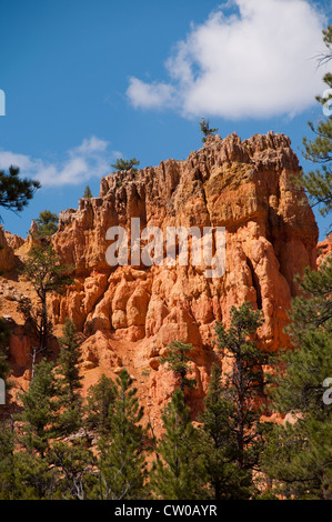 red canyon dixie national forest utah foto immagine